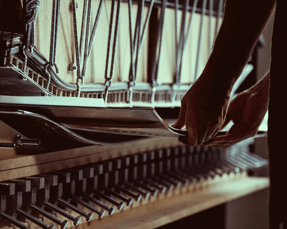 Movement – Inovatívny a moderný výrobca skialpového a freeridového vybavenie