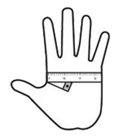 obvod ruky